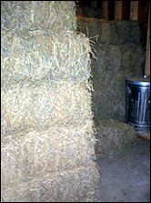 Hay from northern New Mexico